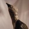Oiseau dos noir